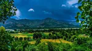 GIS Natural Resource Management Success Stories