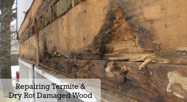 Termite and Dry Rot Repair