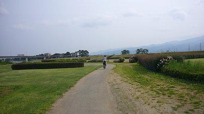 2008_0607_153615aa_s