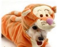 Qoo10 - [DISNEY] - Winnie the Pooh - Tigger - Dress Up Dog ...