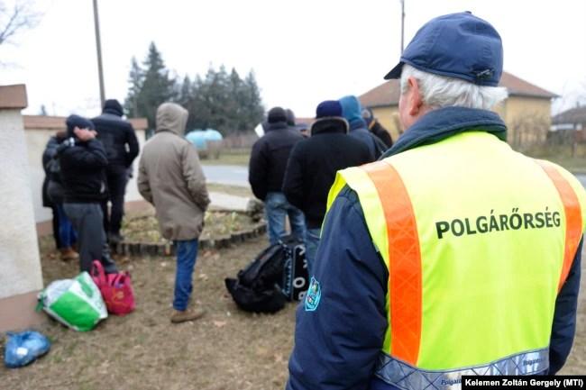 Egy polgárőr koszovói határsértőkre felügyel Ásotthalmon 2015. január 29-én.