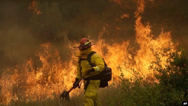 Un bombero de Cal Fire en Mendocino camina junto a una línea de contención mientras un incendio forestal avanza en Lakeport, California, el lunes, 30 de julio de 2018.