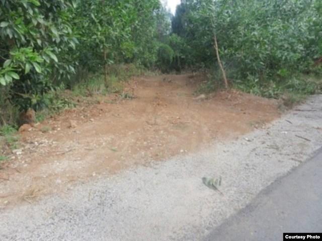 Lối dẫn xuống Bãi Chuối. Vị trí này cách QL 1A 5km, cách Bãi Chuối khoảng 1,5km.