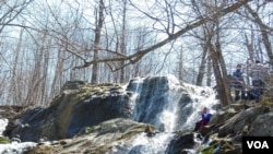 This is one of the cascading waterfalls that can be found in the Shenandoah Valley.
