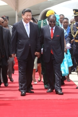 Chinese President Xi Jinping, right, and Zimbabwean President Robert Mugabe hold hands upon his arrival in Harare, Zimbabwe, Tuesday, Dec. 1. 2015.