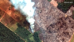 La situación se ha declarado como un estado de emergencia ambiental que puede generar complicaciones para los habitantes de dicho territorio.