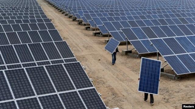 Các tấm pin năng lượng mặt trời hứng ánh nắng để chuyển quang năng thành điện năng