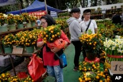A woman buys Mandarin oranges at a New Year market in Hong Kong's Victoria Park, Monday, Feb. 4, 2019. Chinese will celebrate the lunar new year on Feb. 5 this year which marks the Year of the Pig in the Chinese zodiac. (AP Photo/Vincent Yu)