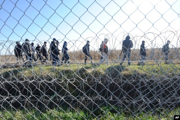FILE - Migrants walk behind a temporary protective fence at the border between Hungary and Serbia near Morahalom, southeast of Budapest, Hungary, Feb. 22, 2016.