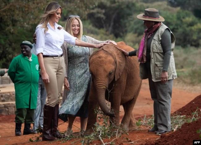U.S. first lady Melania Trump (L) and first lady of Kenya Margaret Kenyatta (R) pet a baby elephant at The David Sheldrick Elephant Orphanage in Nairobi, October 5, 2018.