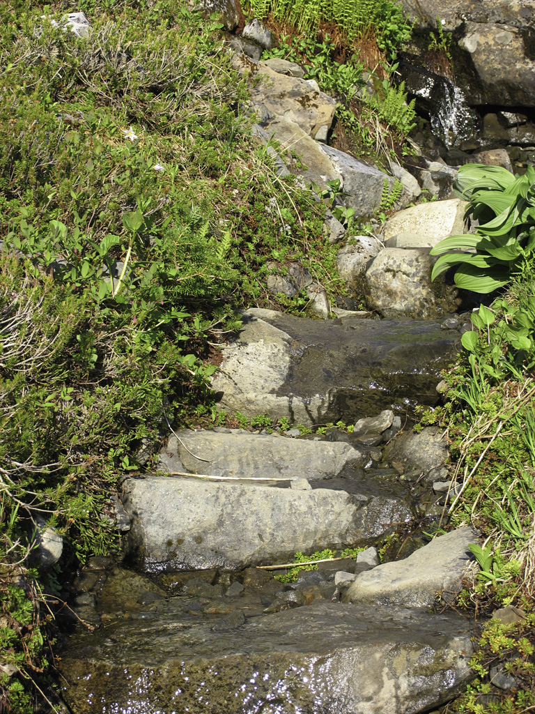A staircase leads travellers into/out of the basin