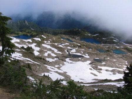 The view from Bogachiel Peak