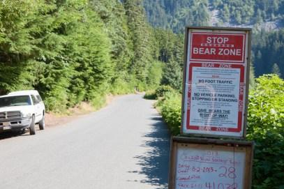 Bear crossing zone on Lutak Road