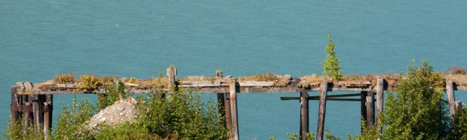 Nature takes over an abandoned pier