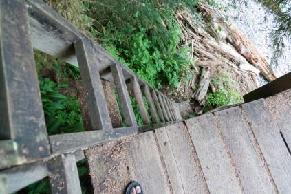 Walbran Creek to Camper Creek