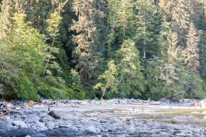 WCT Camper Creek to Thrasher Cove