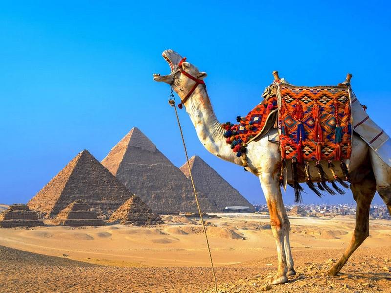 Gdzie jest Egipt - na mapie świata. Piramidy i królowie doliny