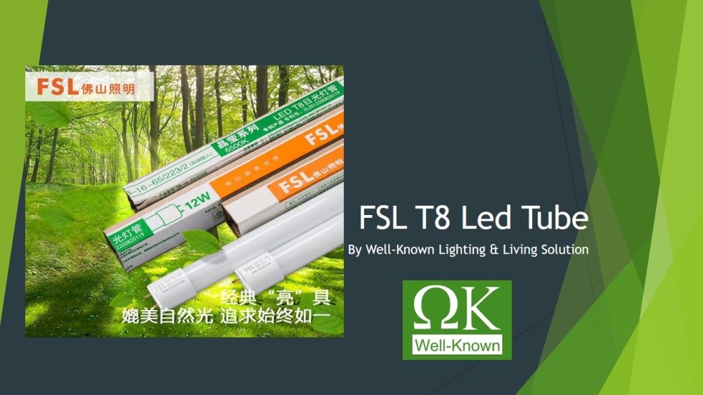 medium resolution of fsl t8 led tube day white with one year warranty no rewiring is required led light