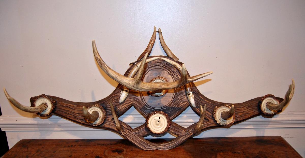 Deer Antler Coat Rack