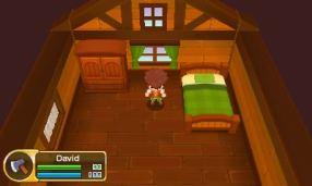 14_3DS_Flint_Attic_PR_DE