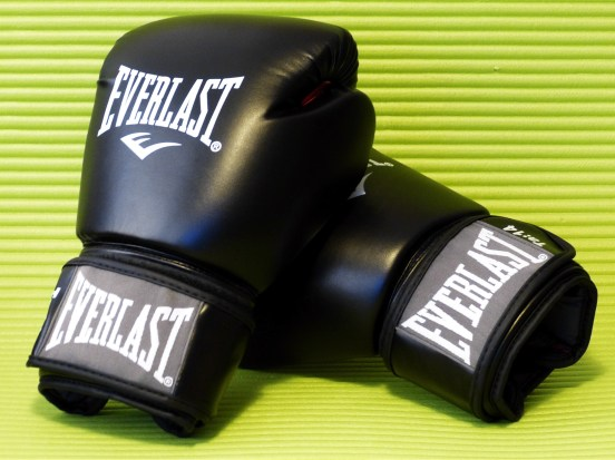 Everlast_Fighter_1