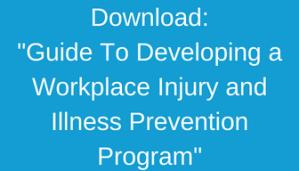 Guide Developing Workplace IIP
