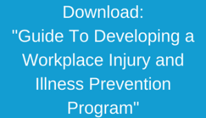 Guide Developing Workplace IIP