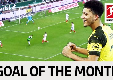 Top 10 Goals February – Vote for the Goal of the Month