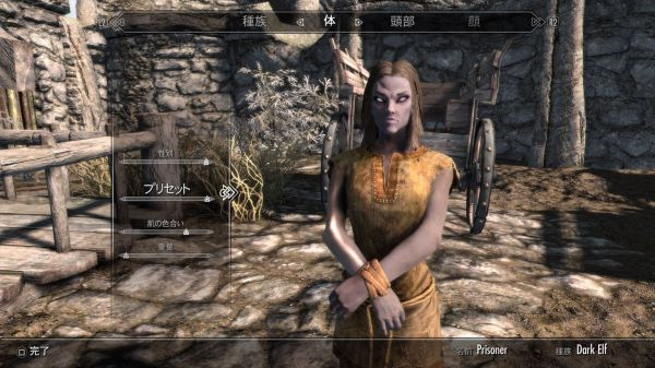 20+ Dunmer Skyrim Preset Mod Pictures and Ideas on Meta Networks