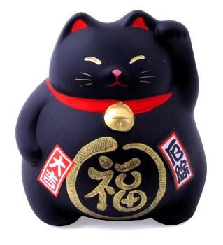 Gatto cinese nero