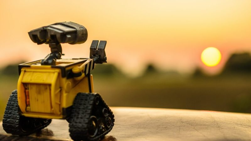 Are robots the solution to loneliness during the pandemic?