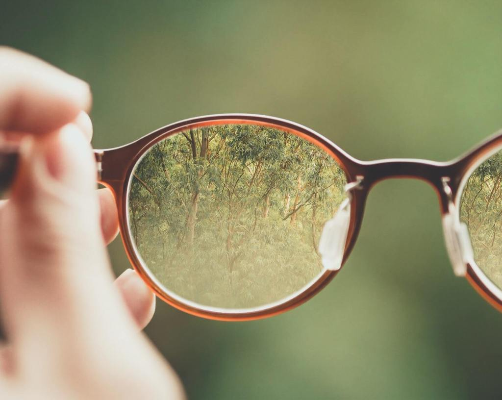 A pair of Peepers glasses where the world is blurred around it, but looking through the lens is crystal clear.