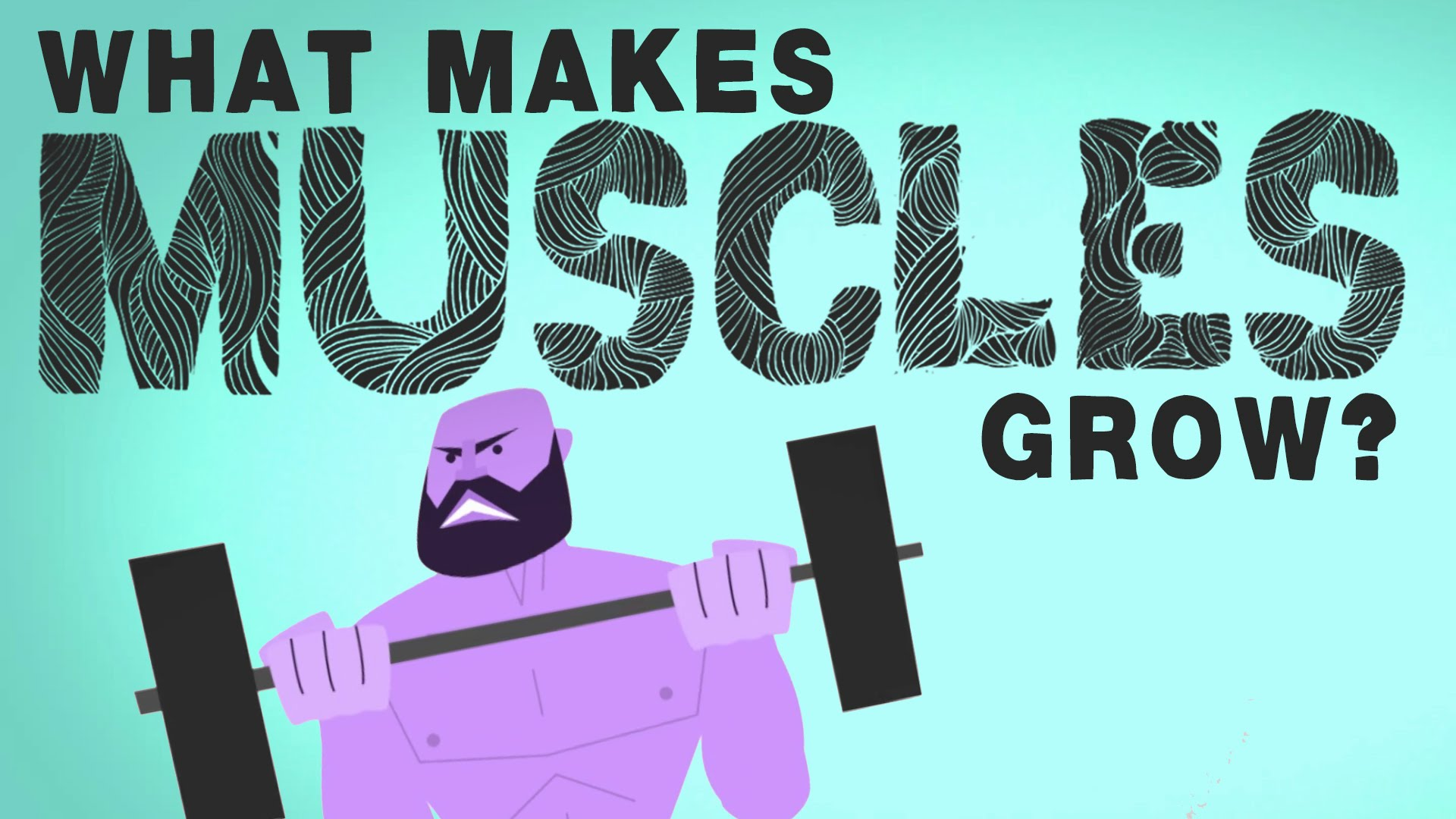 What makes muscles grow? 8