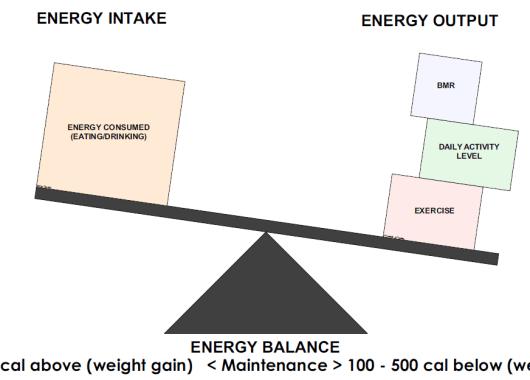 Energy Balance Scale