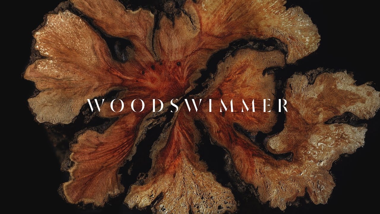 WoodSwimmmer, a Stop Motion Journey Through Wood 3