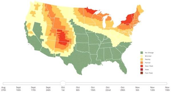 The 2018 Fall Foliage Prediction Map 24