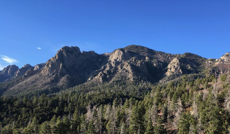 Cycling the Sandia Crest 4