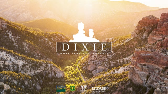 After This Video Utah's Dixie National Forest Might be My Next Bucket List Ride 8