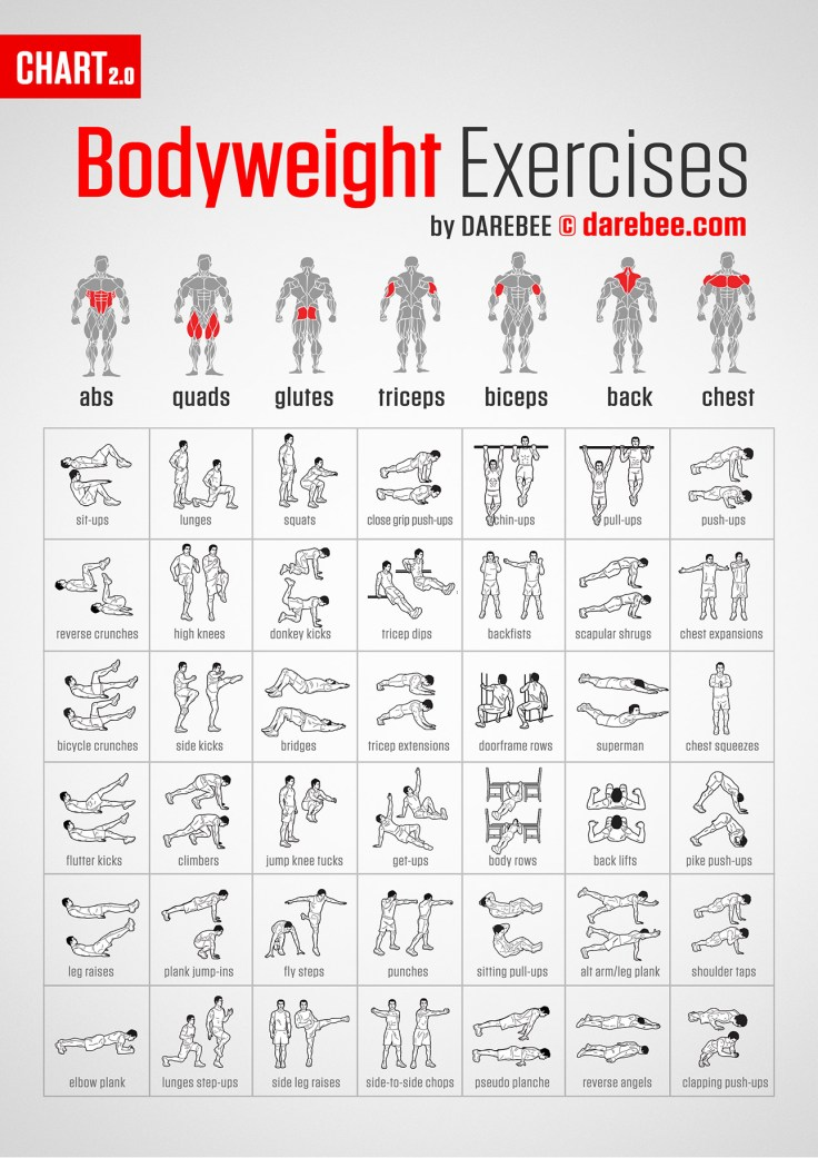 Awesome Chart for Finding Bodyweight Exercises for Every Body Part 4