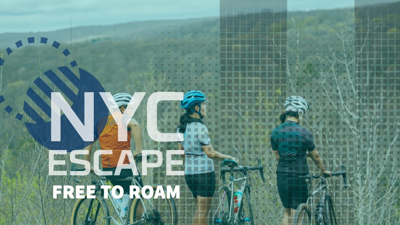 ROAM Free: Escape From New York City 2