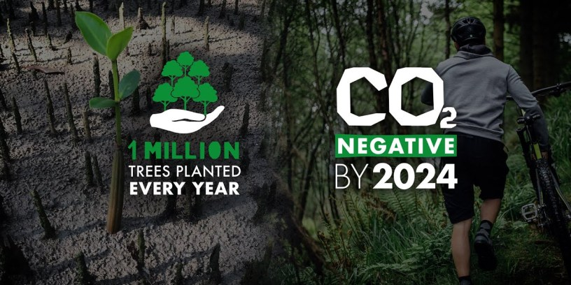 Endura Planted Over 1.3 Million Trees in 2020