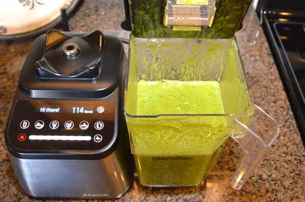 10-BlendTec-Nutrition-Green-Smoothie-GearChase