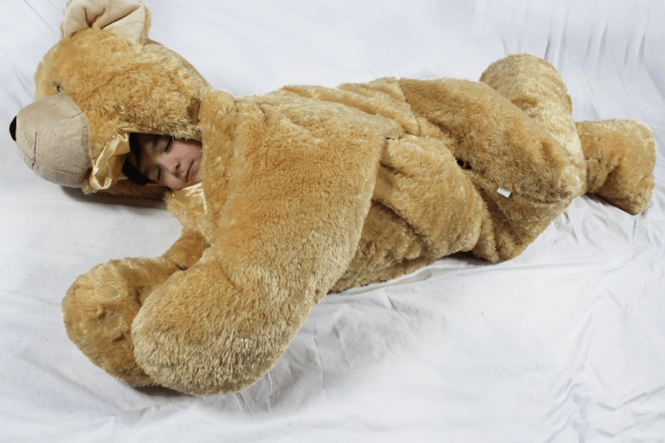 Nice Bear Sleeping Bag