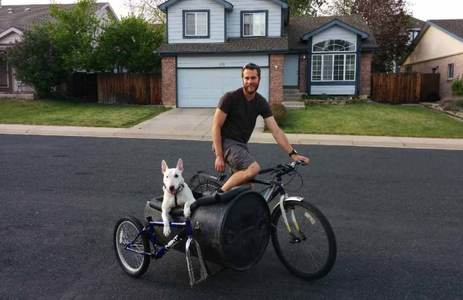 Dog Bike Ride Videos