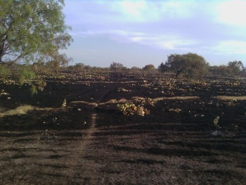 geardiary_fire_at_east_ranch_04