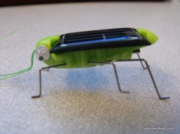 EFO's Solar Toys are Fun and Educational  EFO's Solar Toys are Fun and Educational  EFO's Solar Toys are Fun and Educational  EFO's Solar Toys are Fun and Educational  EFO's Solar Toys are Fun and Educational  EFO's Solar Toys are Fun and Educational  EFO's Solar Toys are Fun and Educational  EFO's Solar Toys are Fun and Educational  EFO's Solar Toys are Fun and Educational  EFO's Solar Toys are Fun and Educational  EFO's Solar Toys are Fun and Educational  EFO's Solar Toys are Fun and Educational  EFO's Solar Toys are Fun and Educational  EFO's Solar Toys are Fun and Educational