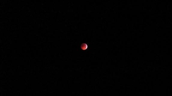 Did You Catch Last Night's Lunar Eclipse?
