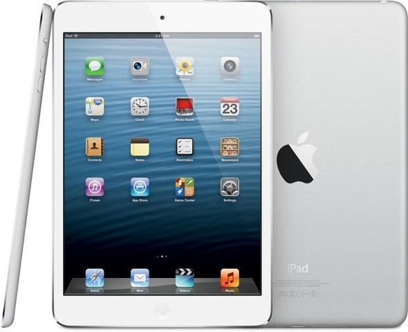 iPad Mini - Not Actually a Rental Unit