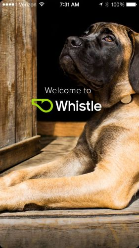 Whistle6