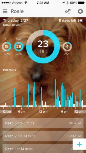 GearDiary Whistle, the Fitness Tracker for Dogs, Is Useful and Helpful